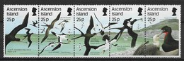 ASCENSION ISLANDS 1987 SEA BIRDS - Palmípedos Marinos