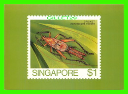 TIMBRES REPRÉSENTATIONS - SINGAPORE, CRICKET ( HOMOEOXIPHA LYCOIDES ) - AMERIPEX, 1986 CHICAGO - - Timbres (représentations)