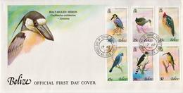 Belize Set On FDC - Birds