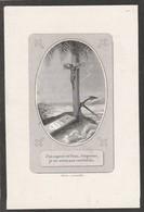 Dp  Theodorus Joannes Guillielmus Mosselman-antwerpen 1864 - Images Religieuses