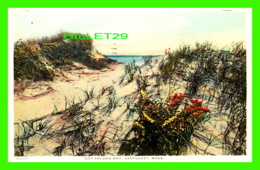 NANTUCKET, MA - OUT POCOMO WAY - TRAVEL 1956 -  H. MARSHALL GARDINER - - Nantucket