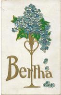 5-CARD CON NOME-BERTHA-CARD AMERICANA VIAGGIATA 1914 IN RILIEVO - Nomi