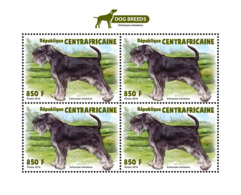 Central Africa  2018   Dogs Fauna S201810 - Central African Republic