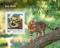 Djibouti 2018 Cats  Fauna  S201810 - Djibouti (1977-...)