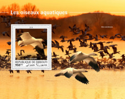 Djibouti 2018  Fauna Water Birds  S201810 - Djibouti (1977-...)