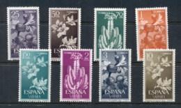 Spanish Sahara 1962 Flowers, Cacti MUH - Spanish Sahara