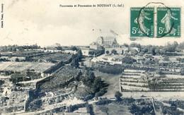 44 -Boussay - Panorama Et Procession - Boussay