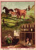 CHROMO - EL CUERO - LE CUIR - THE LEATHER - Trade Cards