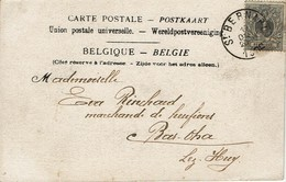Belgie Belgium 1884 - Postkaart: Rubens - Stempel: St. Bernard (Antwerpen) - OBP 43 - Belgium