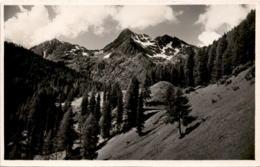 Weissenspitze Aus Der Bruggeralm * 3. 8. 1935 - Defereggental