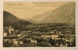 UN SALUTO DA ESINE 1917 VIAGGIATA FP - Brescia