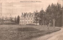56 CHATEAU DE FERRON EN MAURON CIRCULEE 1904 - Otros Municipios