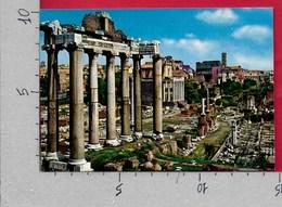 CARTOLINA NV ITALIA - ROMA - Foro Romano - 10 X 15 - Roma