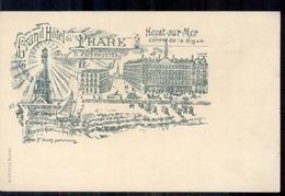 Belgie - Heyst Sur Mer - Centra De La Digue - Grand Hotel Du L Hare - Litho  -  1900 - België