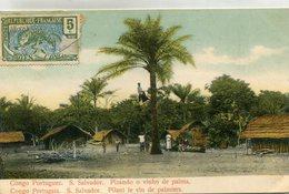 ANGOLA(SAN SALVADOR) ARBRE(VIN DE PALMIER) - Angola