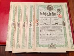 THE  HUDSON  BAY  MINES  COMPAGNIE  LIMITED ------- Lot  De  5  Actions  De  5$ - Mines