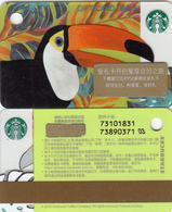 2018 China Starbucks Coffee Toucan Mini Gift Card ¥300 - Gift Cards