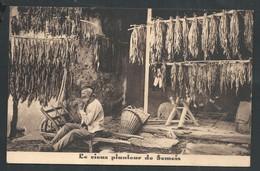 +++ CPA Publicitaire - Planteur De Semois - Tabacs - Cigares - Pub Publicité Tarif  Dildot ROCHEHAUT FRAHAN  // - Cultures