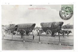 SRI LANKA  (ceylon)  COLOMBO - Bullock Carts   -  L 1 - Sri Lanka (Ceylon)