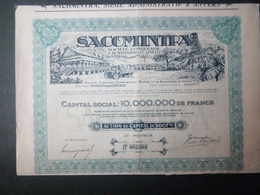 1 SACOMINTRA Sté Congolaise-Belge Action AUTO + Coupons Divisé 20.000 Actions - Aandelen