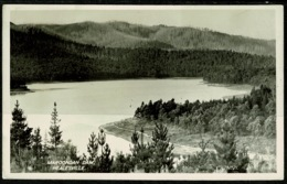 Ref 1242 - 1918 Real Photo Postcard - Maroondah Dam Healesville Victoria Australia - Australia