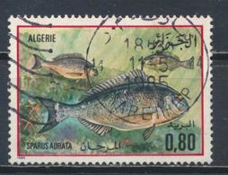 °°° ALGERIA ALGERIE - Y&T N°832 - 1985 °°° - Algeria (1962-...)