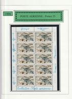 France Feullet De 10 , F62a Sans Blister Biplan 25 - Airmail