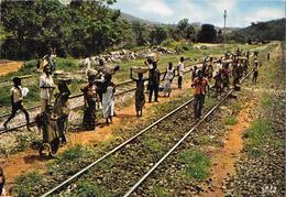 CONGO - C.F.C.O. - Arrivée Du Train Dans Une Halte De La Forêt Du Mayombe - Congo Français - Autres