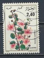 °°° ALGERIA ALGERIE - Y&T N°885 - 1986 °°° - Algeria (1962-...)