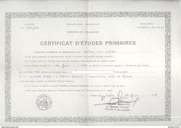 Certificat D'études Primaires - Académie De Dijon - Attribué 1981 - Diplômes & Bulletins Scolaires