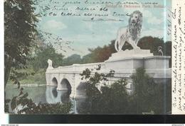 CPA Buffalo - Bridge In Delaware Park - Circulée 1907 - Buffalo