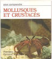 Mollusques Et Crustacés Première Documentation Pour Comprendre Chez FERNAND NATHAN De 1976 - Livres, BD, Revues