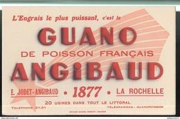 Buvard Guano Angibaud - La Rochelle - Très Bon état - Vloeipapier