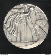 Médaille Fluctuat Nec Mergitur - Offert Par Le Conseil De Paris - Professionnels / De Société