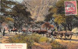 Namibie / Belle Oblitération - 18 - In Der Hatsamaser Pforte - Namibie