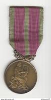 Médaille Société Musicale Et Chorale - Professionnels / De Société