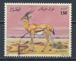 °°° ALGERIA ALGERIE - Y&T N°1016 - 1992 °°° - Algeria (1962-...)
