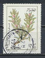°°° ALGERIA ALGERIE - Y&T N°1022 - 1992 °°° - Algeria (1962-...)