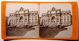 FONTAINE DI TREVI - ROMA - Stereoscopic