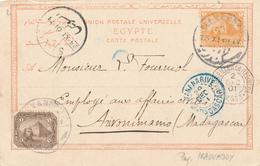 217/27 - EGYPTE Carte-Vue 2 TP De La Rue ALEXANDRIE1901 Vers MADAGASCAR - Via SUEZ Et Bateau Français - Égypte
