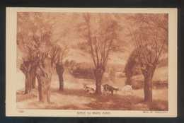 *Mlle. M. Hauterive - Bords Du Grand Morin* Salon De Paris. Ed. Braun & Cie. Nº 7230. Nueva. - Pintura & Cuadros