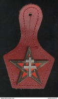 Insigne 1er Régiment De Spahis - Delsart - Army