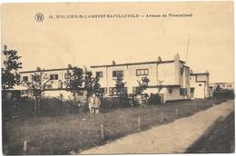 Woluwé-St-Lambert NA10: Kapelleveld. Avenue De Wesembeek 1933 - St-Lambrechts-Woluwe - Woluwe-St-Lambert