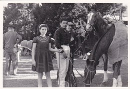 GRUPO GROUP PERSONAS PEOPLE PERSONS & CABALLOS CHEVALS HORSES. CIRCA 1960s PHOTO ORIGINAL SIZE 13x9cm- BLEUP - Other
