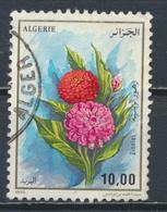 °°° ALGERIA ALGERIE - Y&T N°1084 - 1995 °°° - Algeria (1962-...)