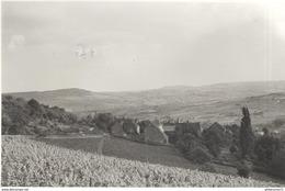 Photo Originale Dezize Les Maranges -  Format 11 X 17 Cm - Datée 1960 - Places