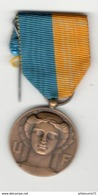 Médaille Union Fédérale Des Combattants - France