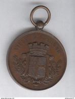 Médaille Société De Tir De La Ville D'Auxonne - Très Bon état - Army & War