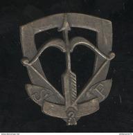 Insigne De Berêt Des Scouts De France Circa 1940 - Army & War