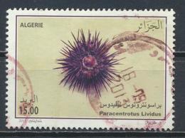°°° ALGERIA ALGERIE - PARACENTROTUS LIVIDUS - 2015 °°° - Algeria (1962-...)